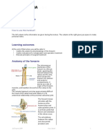 FSP ORP Handout English Forearm Fractures Final-3