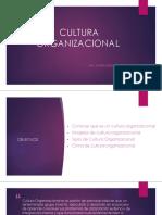 7. Cultura Organizacional