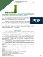 Principalele Plante Melifere Din Romania _ Gazeta de Agricultura