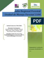 Estudio Regional Forestal 3104
