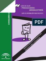 GS Adeno Amigdalectomia