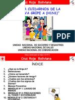 Influenza a H1N1 CRB_comunidad