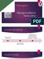 09_Hipogonadismo_Masculino