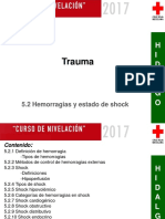 5.2_Hemorragias y Estado de Shock