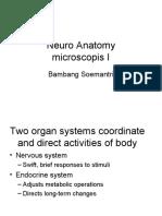 4. Neuro Anatomy 2010