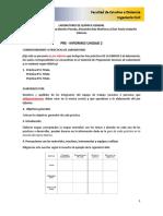 Instructivo Formato Preinforme Unidad 2 2018-I