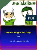Anatomi Panggul & Isinya