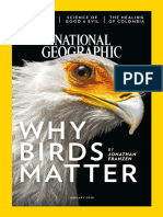 2018-01-01 National Geographic Interactive@Enmagazine