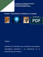Unidad 5 Pensamiento Inteligencia y Lenguaje