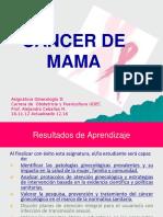 Cancer Mama (2)