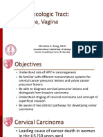 Lower Gynecologic Tract- Cervix, Vulva, Vagina