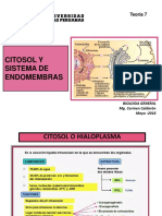 Bio Gen  Teoria 6  2017  Sist endomembranas-1.pdf