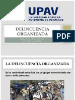 Delincuencia Organizada Exposicion Lic Mariana