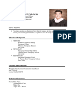 Resume of Mr. Jenesis Christian F Palad