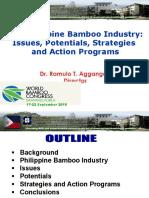 PhilippineBambooIndustry_RTAggangan