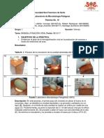 Informe 10 - Hemaglutinación vírica.docx