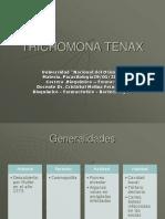 Trichomona tenax 2012