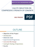Effect of Calcite