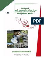 2017000001655 Contaminacion de Leche de Vaca 1311017