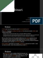 Arbori binari.pptx