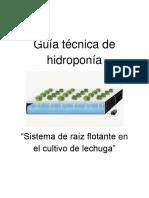 Guía Técnica de Hidroponía