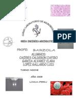 23673719-PRACTICA-TIMCION-GRAN-1.doc