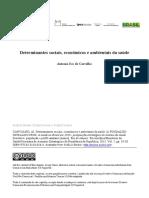 Determinantes sociais, econômicos e ambientais da saúde