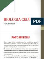 Biologia Celular Fotosintesis