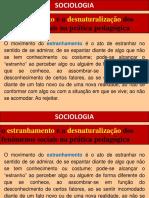 O Olhar Da Sociologia