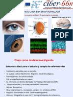 Patologia Ocular