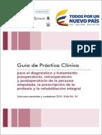 GPC Amputados Padres Cuidadores