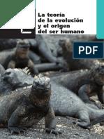 Teoría de la Evolución del ser Humano