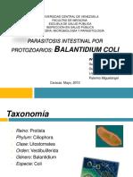 Balantidium Coli (1)