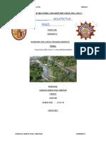 informe 6-7-8