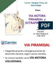 Via-Motora-Piramidal-y-Extrapiramidal-PDF.pdf