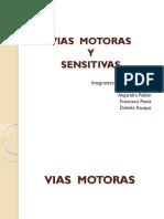 viassensitivasymotoras1-120507224226-phpapp02.pptx