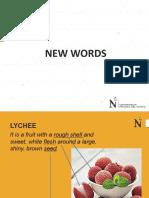 UNIT 2 - New Words