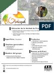 Ficha Productos Ololique