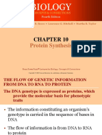 Protein Synthesis 06-07