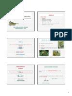 cl_sem11_aceites_esenciale.pdf