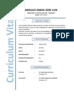 Curriculum Angulo Andia Jose Luis