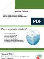 Topic 11 Organisational Culture
