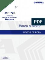 180302 Barco a Motor Novo