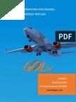 SOP - Gol Virtual