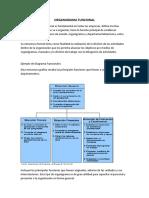 ORGANIGRAMA FUNCIONAL.pdf