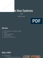 whit nose syndrome  1