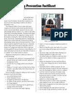 fsprotecttrucks.pdf