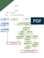 Patogenesis Kejang Intrakranial