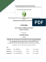 these sur les protections contre la corosion a hassi r'mel.pdf
