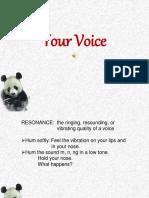 LEC3_Your Voice.pdf